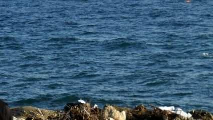 Δεν το πιστεύει κανείς! Αυτή είναι η πιο βρώμικη παραλία της Ελλάδα – ΒΙΝΤΕΟ