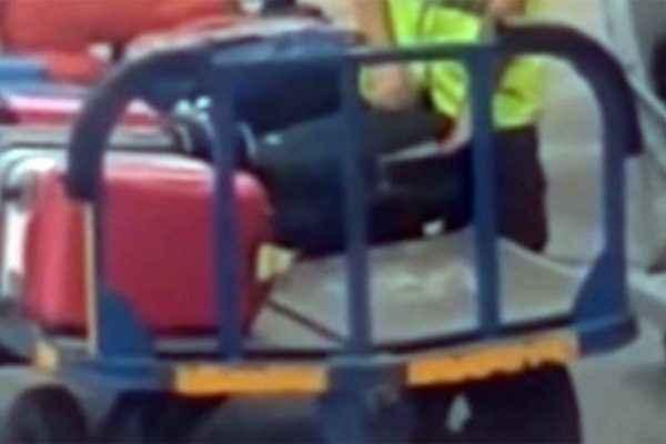 Απίστευτο: Υπάλληλος αεροδρομίου έβαζε χέρι σε βαλίτσες! (vid)