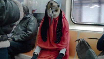 Ένα πλάσμα του Μπος περιπλανιέται στο μετρό της Νέας Υόρκης