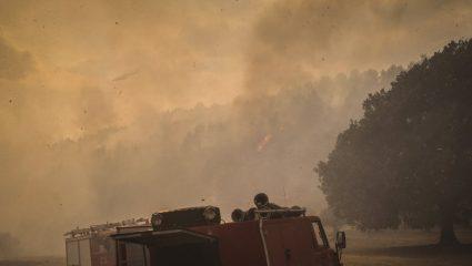 Πύρινη κόλαση στην Κεφαλονιά – Εκκενώθηκαν σπίτια