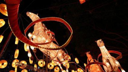 Σήμερα η κινέζικη Πρωτοχρονιά!