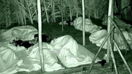 Survivor 3: Το ροχαλητό του Ογκουνσότο άφησε ξάγρυπνους τους παίκτες! – ΒΙΝΤΕΟ