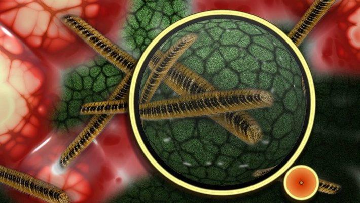 Παγκόσμια ανησυχία: Επικίνδυνο μικρόβιο στέλνει στο νοσοκομείο χιλιάδες ανθρώπους