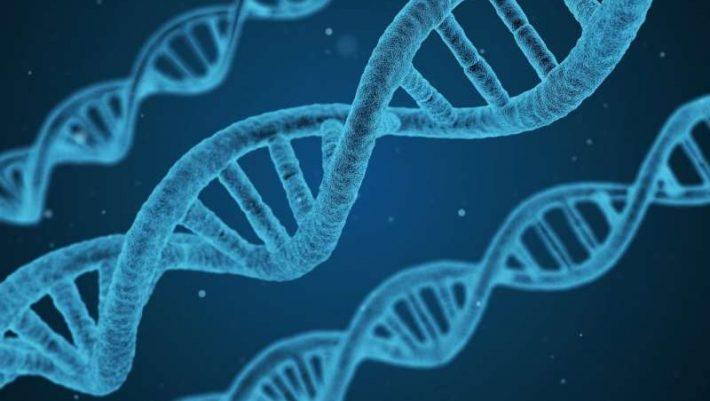 Κρύβονται τελικά οι ασθένειες στο DNA μας;