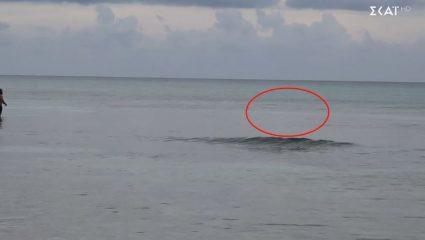Παίκτης του Survivor πλησίασε καρχαρία για να τον σκοτώσει! – ΒΙΝΤΕΟ