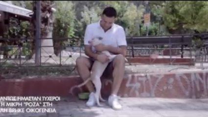 Bασίλης Κικίλιας: Σποτ με τους σκύλους της Κυψέλης