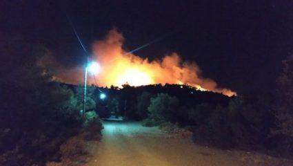 Φωτιά στη Νέα Μάκρη: Δεν κινδυνεύει κατοικημένη περιοχή
