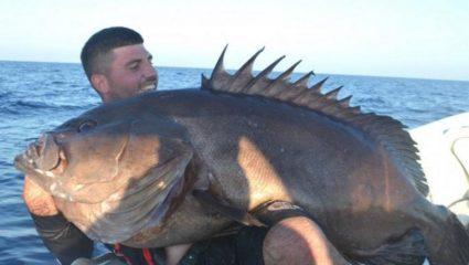 Κρητικός βγάζει αυτό το τέρας στα 190 μέτρα – Τι ψάρι είναι (Pic)