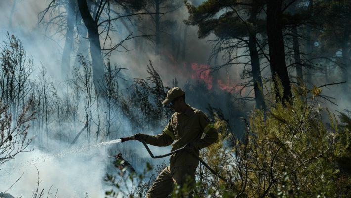 «Όταν η γυναίκα τα έχει δώσει όλα»: Η φωτογραφία από τις φωτιές που κάνει τον γύρο του διαδικτύου